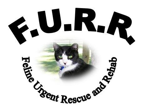 FURR logo