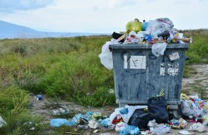 Litter is a persistent problem not only in Mint Hill but across the country