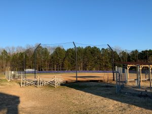 A View From Behind the Backstop.