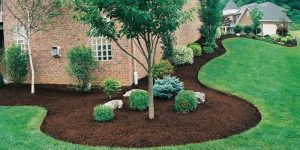 Completed mulching project by Metrolina Mulch LLC
