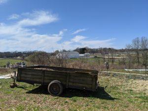 Dabhar Farm