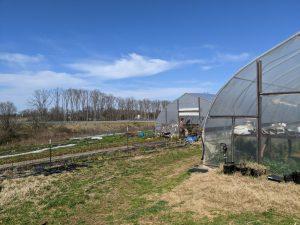 Dabhar Farm utilizes five different growing climates