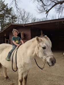Young child riding a horse