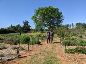 Clear Creek Garden & Field